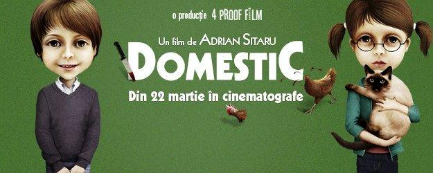 domestic_film_2013