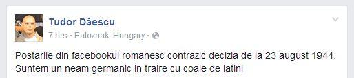 tudor daescu